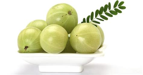Amla Gooseberry For Hair by Benefits Of Amla Juice Livestrong