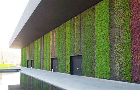 imagenes muros verdes como hacer muros verdes y jardines verticales ecolog 237 a