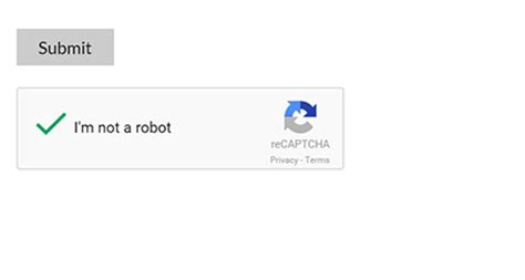 meet new google captcha recaptcha features updates add ons cp contact form with paypal