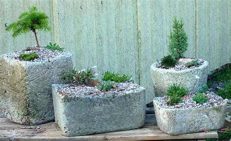 Making Window Boxes - hypertufa succulent south