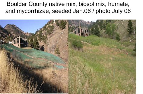 Boulder Co Detox by Landscaping Turf Grass Rocky Mountain Bio