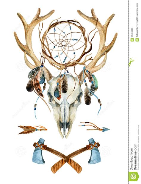 deer skull animal skull with dreamcatcher stock
