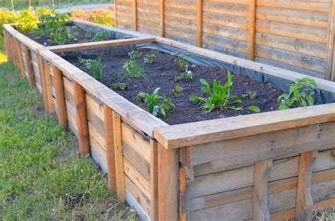 how to make garden beds diy raised bed garden box for backyard garden house design