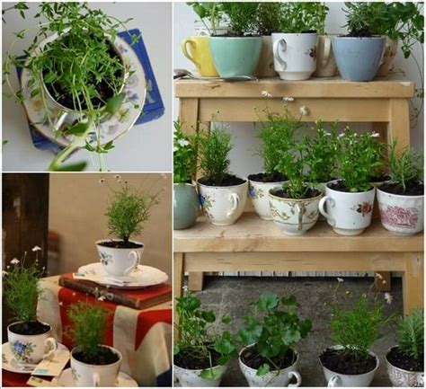 indoor kitchen garden ideas 24 indoor herb garden ideas to look for inspiration