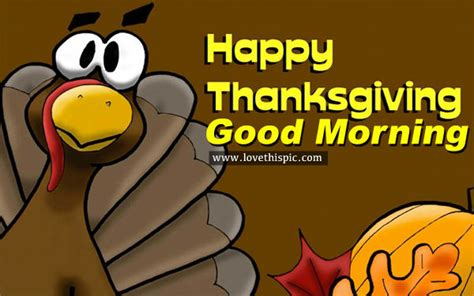 thanksgiving morning happy thanksgiving good morning pictures photos and