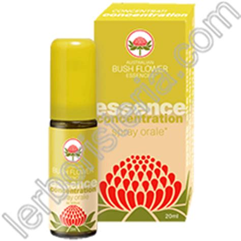 concentration fiori australiani australian bush flower essences concentration