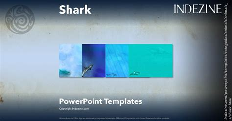 shark powerpoint template shark powerpoint templates