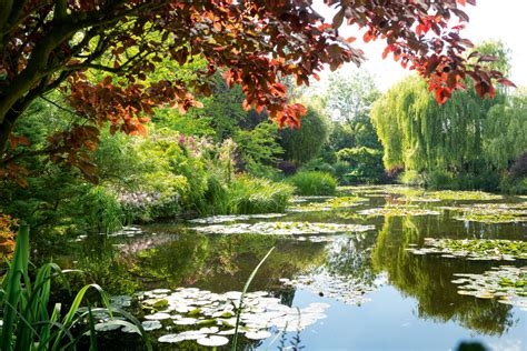 man   monets famed gardens growing artsy