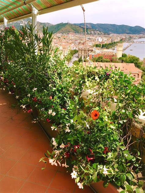 giardini e terrazzi terrazzi e giardini ugo pellecchia piante e fiori