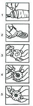 Piring Mangkuk Saji Bentuk Daun Colorfull tips trik membuat hiasan dari sayuran ladapur