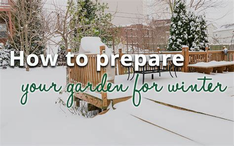 how to prepare garden for winter how to prepare your garden for winter david domoney