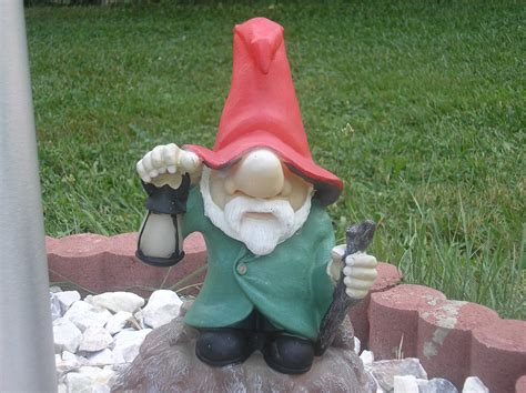 garden gnome crazy lawn gnomes on pinterest garden gnomes gnomes and