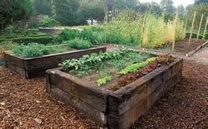 gardening calendar february 2011 week 3 telegraph