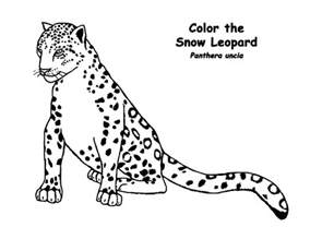 leopard color sleepy leopard coloring pages batch coloring