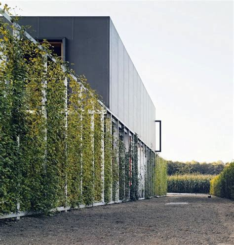 living arc green roofs 1114 best arc01 workflow images on facades