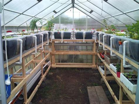 my husbands aquaponic greenhouse garden https www
