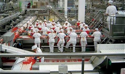 lavoro azienda alimentare lavoro in findus e dal gruppo amadori come candidarsi
