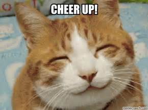 Cheer Up Cat Meme - cheer up