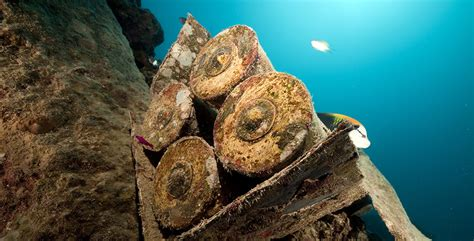 best wreck dives in the world wreck diving the 10 best dive in the world diviac