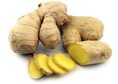 ginger is a disease ginger beats drugs in defeating cancer motion sickness