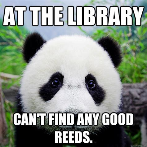 Sad Panda Meme - sad panda meme memes