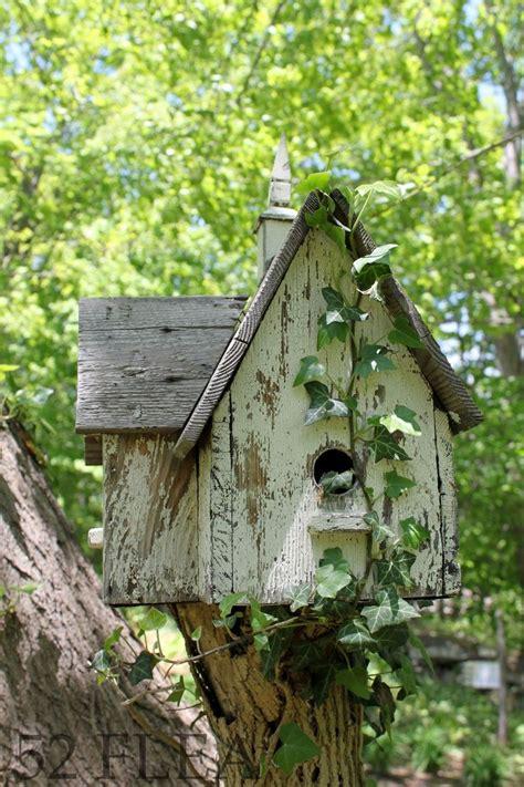 great use of tree stump just make sure you put bird