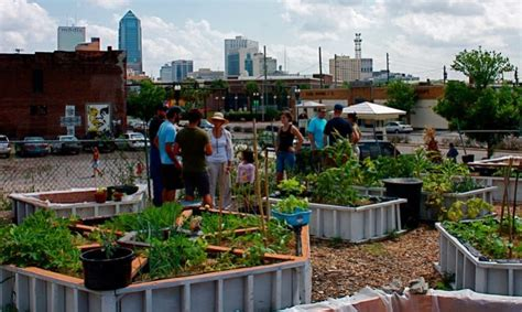 inspiring urban agriculture projects food tank