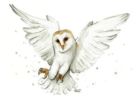 water color owl barn owl flying watercolor painting by olga shvartsur