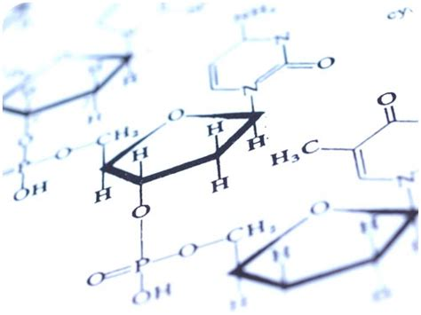Bio Chemical understanding chemistry is essential to fully understand