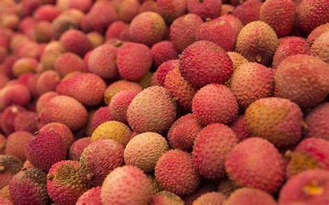 fruit similar to lychee litchi fruit hd wallpaper new hd wallpapers