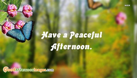 Peaceful Afternoon Quotes