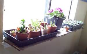 pallet wood window sill plant shelf