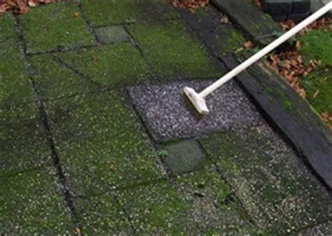 Groene Aanslag Hout Verwijderen Azijn by Groene Aanslag Verwijderen Tegels Buiten Infobron Nl