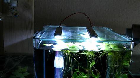 beleuchtung 60l aquarium dennerle nano cube 10 liter mit led beleuchtung hd