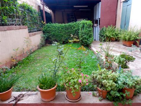 giardino interno casa asmara il giardino di casa bini eritrea live
