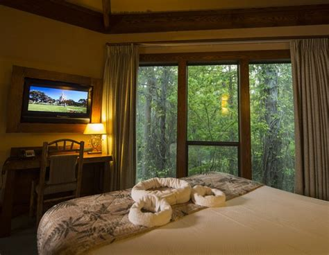 bird s eye view in a rustic retreat at saratoga springs treehouse bird s eye view in a rustic retreat at saratoga springs