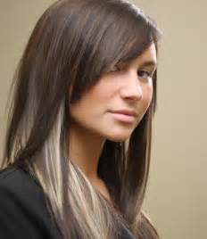 highlights underneath hair pictures of dark hair with highlights