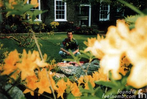 The Garden Of The Last Days by The Last Photos Of Freddie Mercury Alive Feelnumb