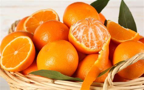 Jeruk Baby Buah Vitaminc Makanan 131 manfaat dan khasiat buah jeruk untuk kesehatan khasiat