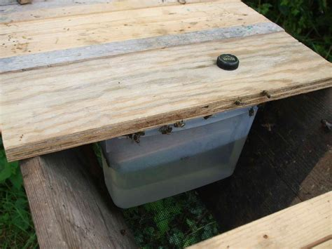 Top Bar Hive Feeder by Top Bar Hive Feeder The Frantic Smallholder