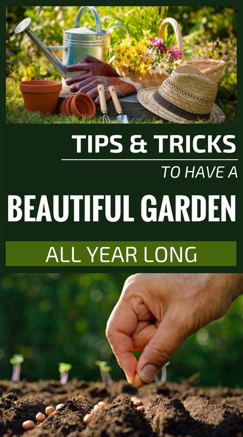 tips  tricks    beautiful garden  year long