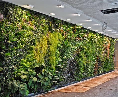 Kissing The Earth Patrick Blanc And Urban Vertical Gardening How To Make Vertical Garden Indoor Living Wall