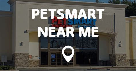 pet stores near me that sell puppies stores that sell dogs near me pets world