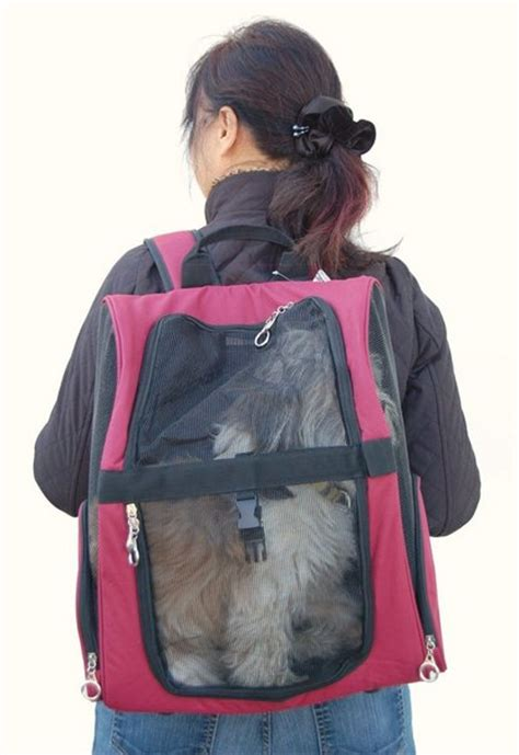 puppy backpack carrier pet carriers backpack or sling it s a matter of convenience