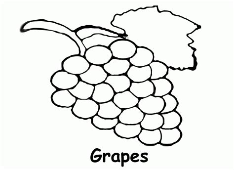 Grapes Coloring Page Coloring Home Color Book For Toddler L