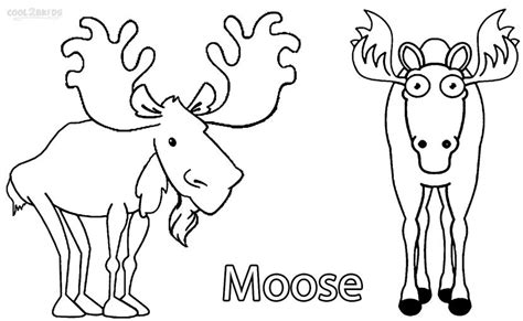 coloring book pages moose printable moose coloring pages for kids cool2bkids