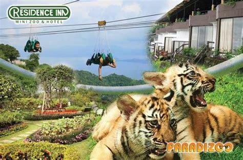 residence inn tagaytay   zipline