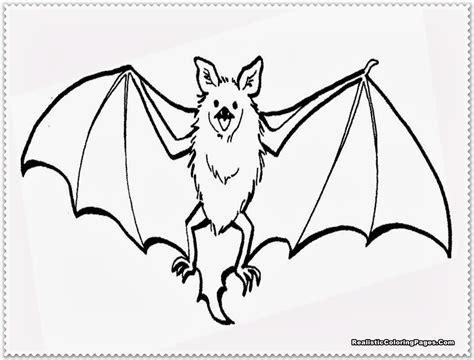 coloring page for bat realistic bat coloring pages realistic coloring pages