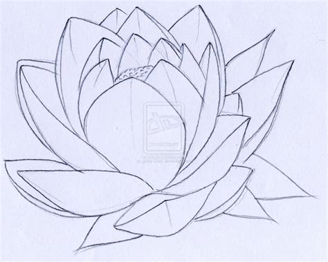 simple lotus tattoo 20 best lotus tattoos stencils golfian