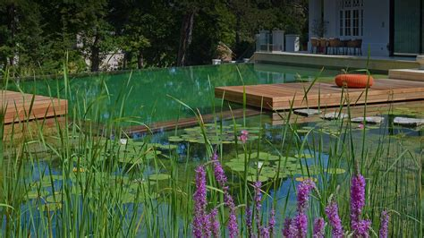 natural pools biotop your expert for natural pools and living pools